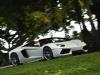 aventador-roadster-b_068