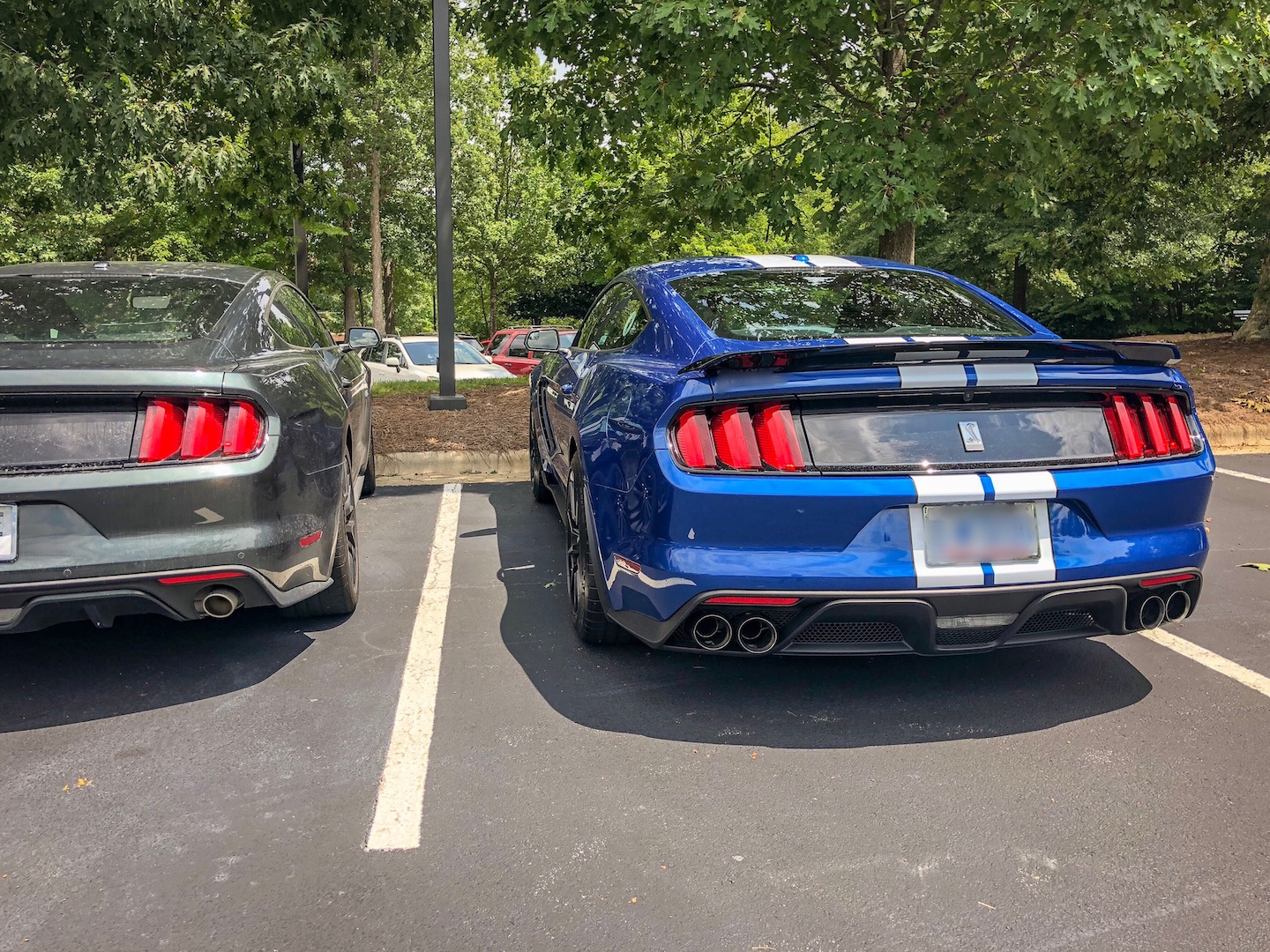 B40999B7-4481-483C-88BC-C32643EE73F62017-Ford-Mustang-Shelby-GT350