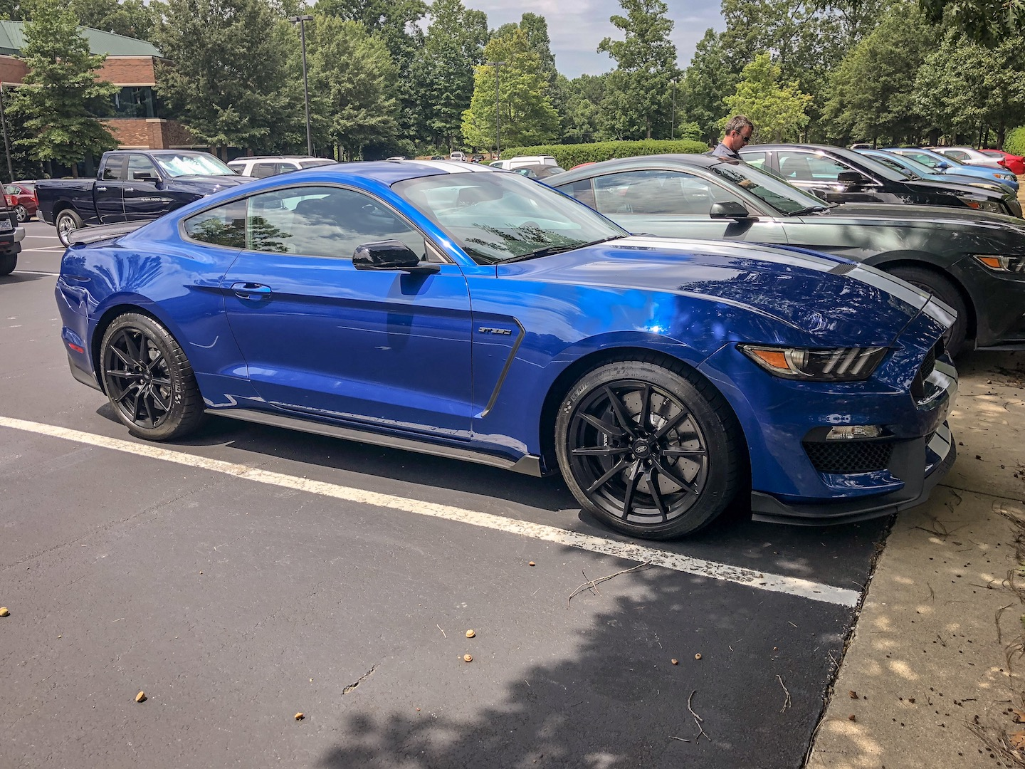 IMG_78382017-Ford-Mustang-Shelby-GT350