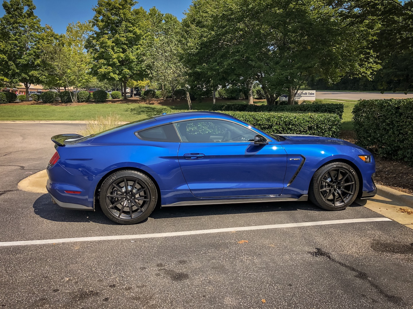 IMG_79332017-Ford-Mustang-Shelby-GT350
